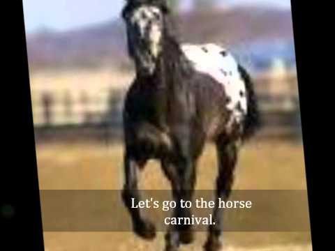 Horse Carnival (Indian Trail Mix)