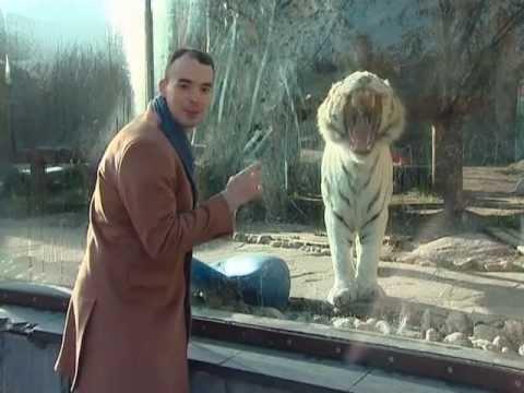 Московский зоопарк: 33 из 50 чудес Москвы