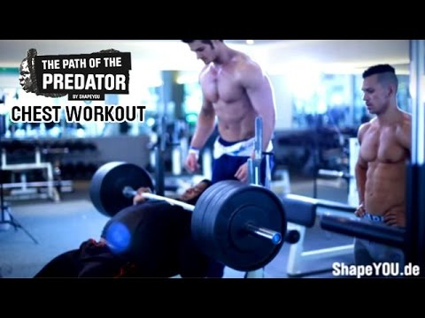 Kai Greene Path Of The Predator -chapter Iii- Chest Workout W  Jeff Seid & Alon Gabbay video