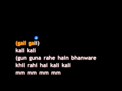 Gunguna Rahe Hain Bhanware