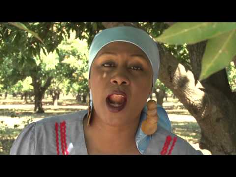 RAM - Se Pa Saw Te Di (Rara Banbou Remix) thumbnail