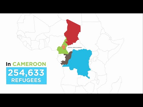 The Central African Republic: A Forgotten Crisis