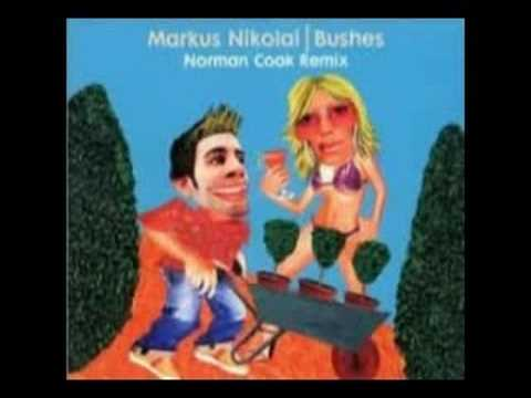 markus nikolai - bushes (norman cook rmx)