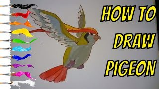 How To Draw Pigeons On Pager And Coloring With Watercolor - Thanh Vi
