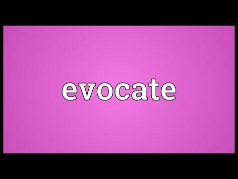 Header of Evocate