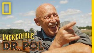 The Incredible Dr. Pol - New Season   The Incredible Dr. Pol