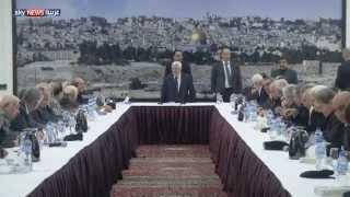 الاعتراف الدولي.. نصر دبلوماسي لفلسطين