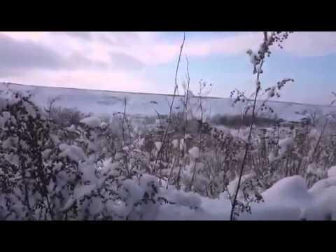 Ukraine War   Pro Russia rebels fire a mortar toward a Ukrainian position near Razdolnaya, Donetsk