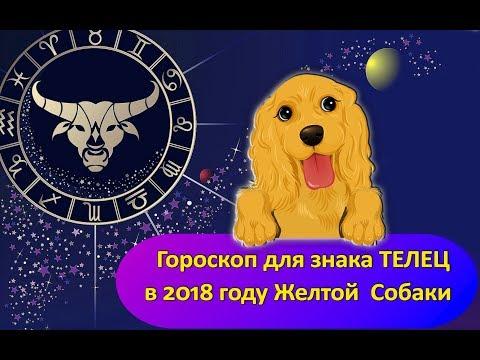 Гороскоп здоровье   2018 год овен женщи