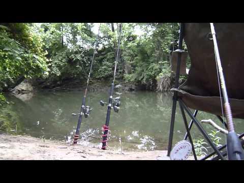 Pennsylvania Carp Fishing, Trout Catching