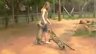 Dancing With A Jaguar