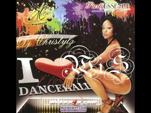 Dancehall/Reggae Mix 2012 - Best Of 2012 Riddims