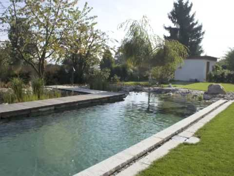 Piscine naturelle bioteich youtube - Prix d une piscine naturelle ...