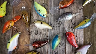 Crankbait Fishing: What You Need To Know