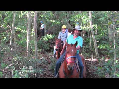Martin Horse Tour Monteverde