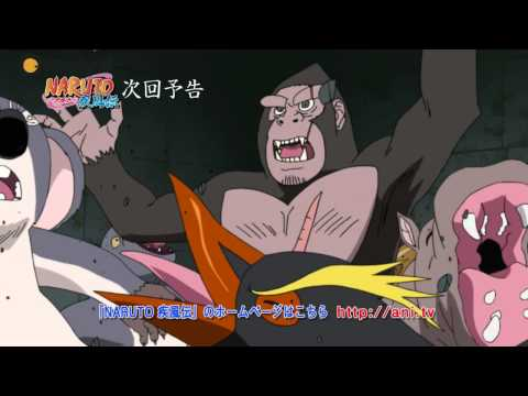Naruto Shippuuden Episode 255 Trailer