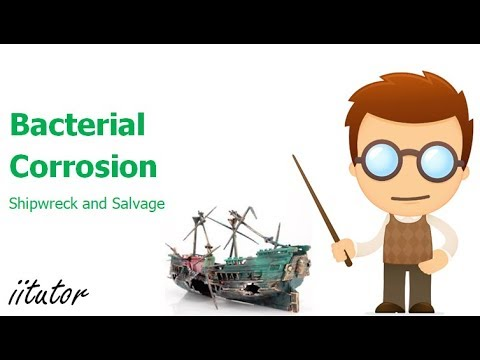 √ Bacterial Corrosion of Shipwrecks - Anaerobic Bacteria - Shipwreck and Salvage - HSC Chemistry
