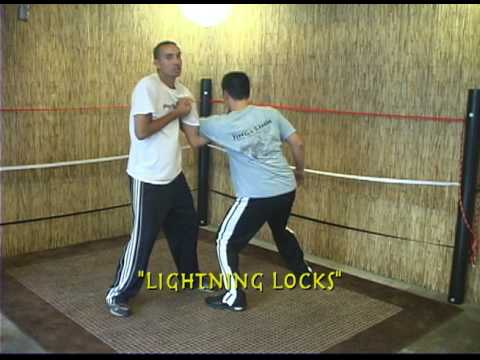 Chin Na Lightning Lock Techniques Image 1