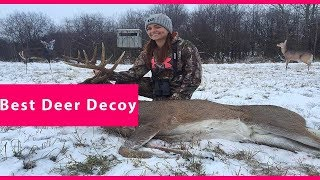 🔥 Deer Decoy: Best Deer Decoy Reviews 🔥 [Latest Reviews & Guide]
