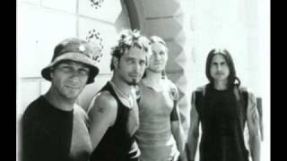 Watch Audioslave Sound Of A Gun video