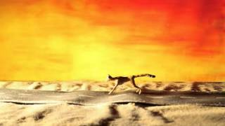 Can't Reach (short Stop Motion Animation Film)