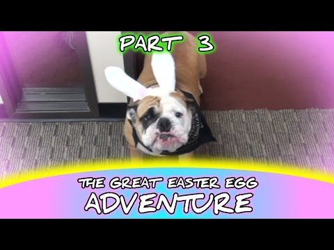 GOLDEN EGG - The Great Easter Egg Adventure 2014 - PART 3 of 4