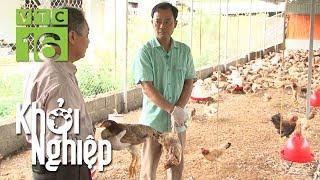 Khởi nghiệp nuôi gà: Xót xa kẻ thắng người thua | Khởi nghiệp 518 | VTC16