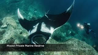 2018 Global Ocean Refuge System Award Winners