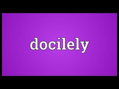 Header of docilely
