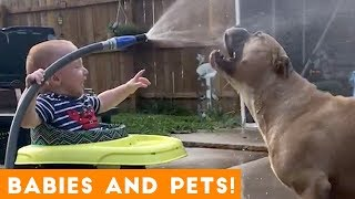 Most Adorable Pet and Baby Compilation Ever | Funny Pet Videos