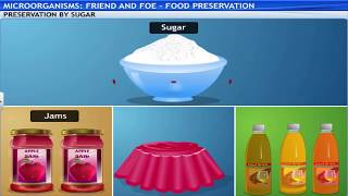 ICSE IX BIOLOGY Economic importance of bacteria-6- Food preservation by Success Guide