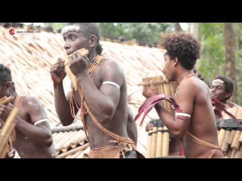 The Solomon Islands' Arasuka'aniwara panpipe band 索羅門羣島的排笛隊