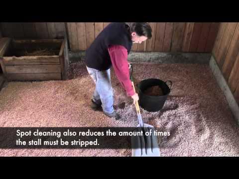 EZ Equine 100% All-Natural Pine Animal Bedding