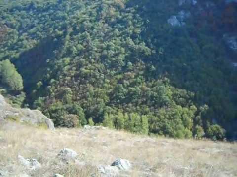 Video: KANJON TOPONIČKE REKE 10 (Banja-Kravlje 2)