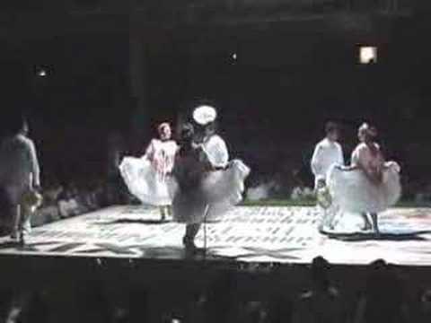 Huapango Huasteco Campeones de Estilo  San Joaquín 2008.