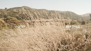 Stay (Official Lyrics Video) – BELOVED