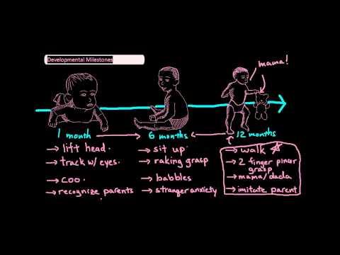 Infant Developmental Milestones [UndergroundMed]