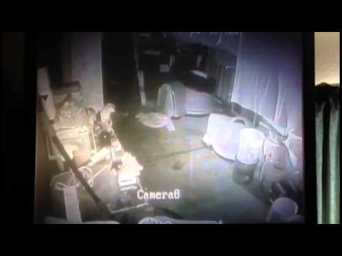 Surveillance Video Shows Dog Bolting From South Napa Quake