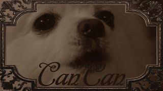 犬の鳴き声を編集して音楽に合わせて曲にしている動画がシュール過ぎるw