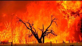 Постоянные поджоги травы,мусора,сёл и лесов в России.Коррупция,бизнес,шалости или план из ЦРУ?))