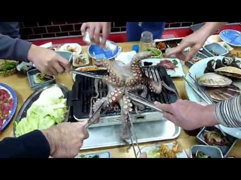 การกินปลาหมึกที่โหดที่สุดในโลก1/2