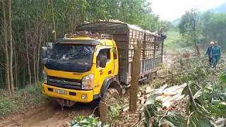 Xe tải chở đầy gỗ tụt dốc, sa lầy phải dùng tời giải cứu - Bản lĩnh lái xe đường núi