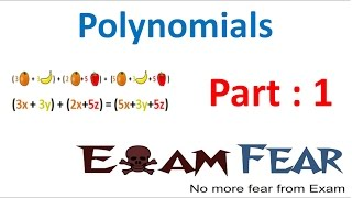 Maths Polynomials part 1 (Introduction) CBSE class 9 Mathematics IX