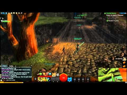 GuildWars 2 on Alienware m14x