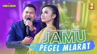 Tasya Rosmala ft Brodin New Pallapa - Jamu Pegel Mlarat ( Live Music)
