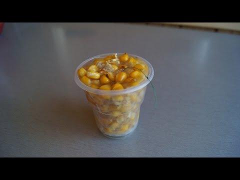 как приготовит кукурузу для прикормки