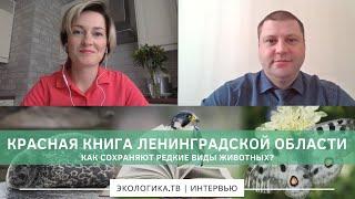 Красная книга Ленинградской области. Как сохраняют редкие виды животных?