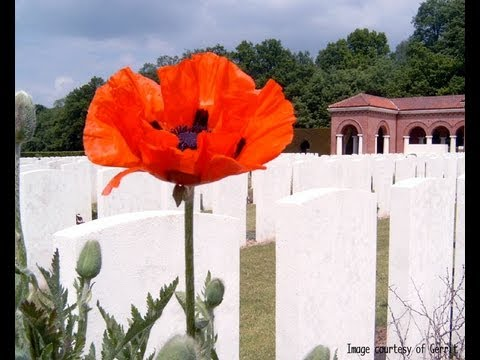 10 Remarkable Facts About World War One