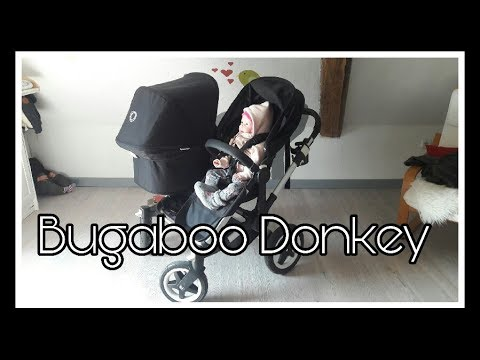 Unser Bugaboo Donkey || Reborn Baby Deutsch
