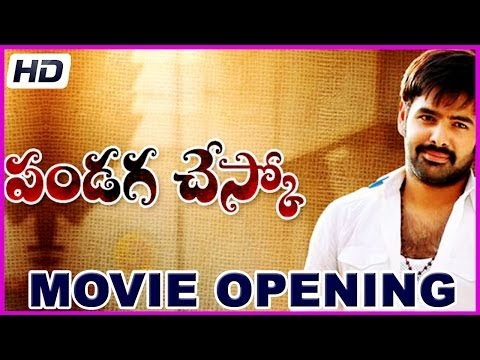 Pandaga Chesko - Latest Telugu Movie Opening - Ram, Rakul Preet Singh (hd) video
